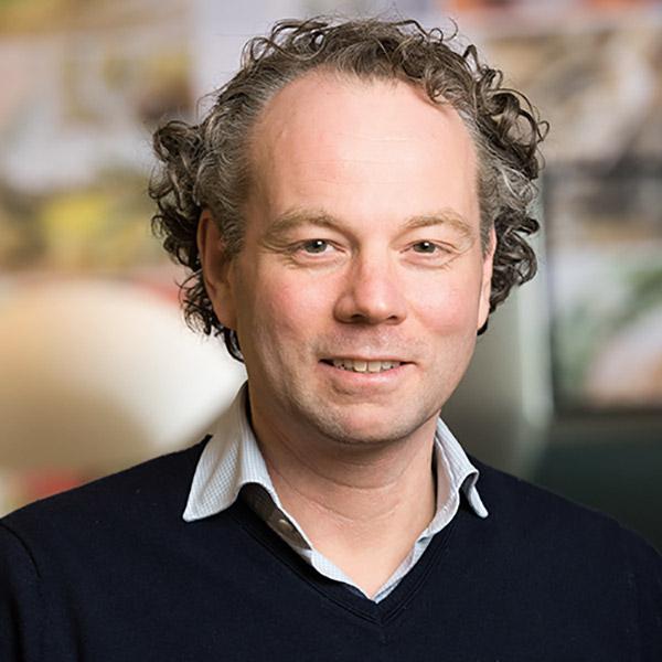 Jeroen-van-der-Werf-portret